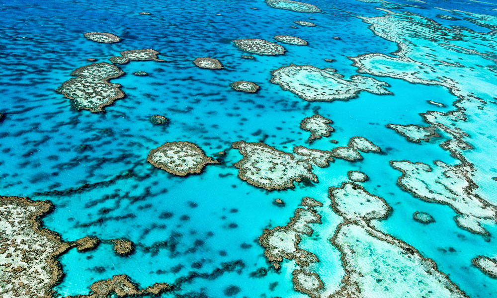 great barrier reef QLD stock image