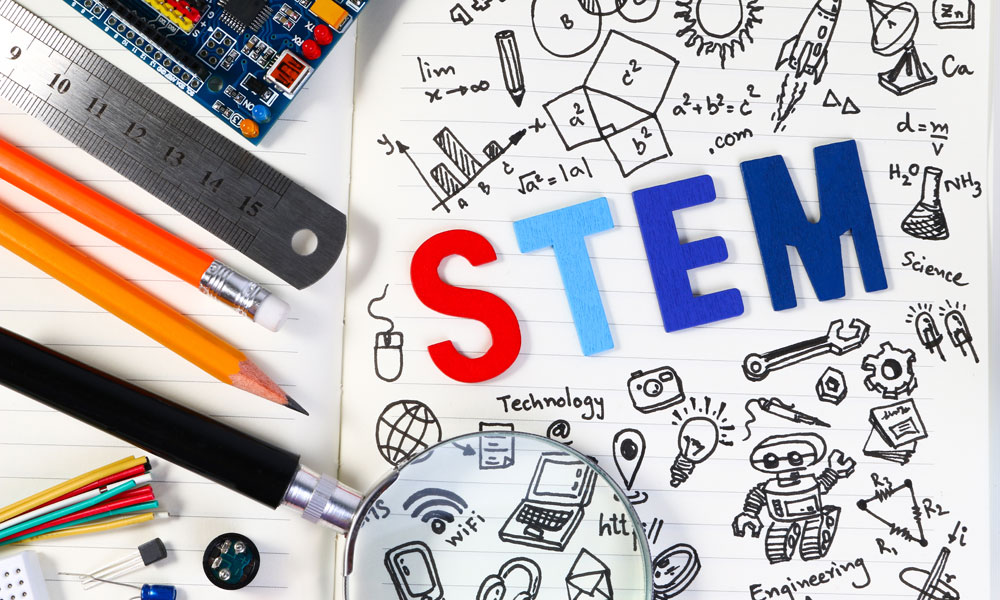 stem stock image