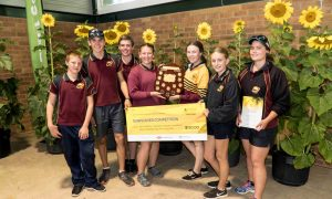 Students from Nanango State High School at the annual Sunflower Competition.