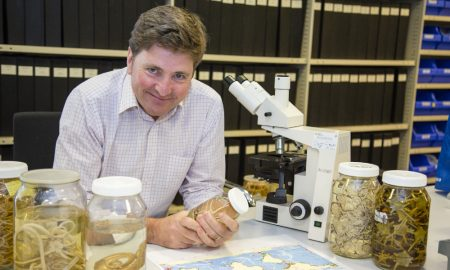 Dr.Tim O'Hara in Marine Vertebrate research laboratory holding a specimen jar containing Brittle Stars, Image courtesy of Museums Victoria (2)