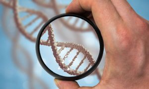 genetic research stock