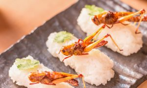 insect sushi edible insects stock image