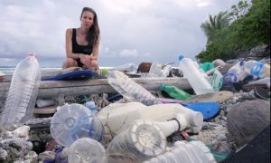 Jennifer Lavers with Cocos Is plastic. Credit - Silke Stuckenbrock