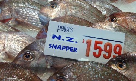 NZ snapper at Sydney Fish Market. Credit Reg Watson