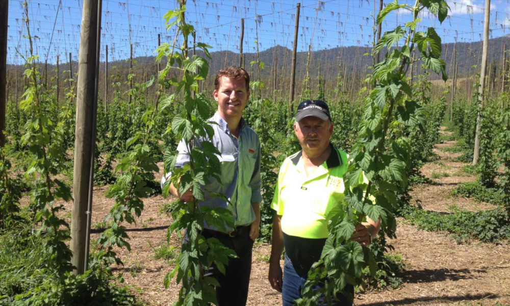 Image courtesy of: Waratah Fencing - major Australian suppliers to the horticulture industry.