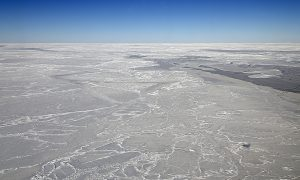 Antarctica lost ice