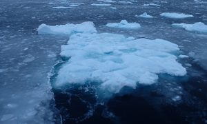 thinner Arctic ice