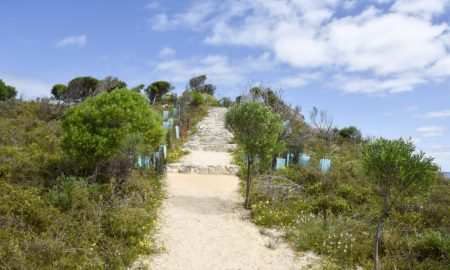carbon-neutral Rottnest